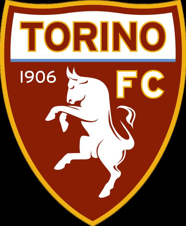 Jucătorul de la Torino infectat cu noul coronavirus a ieşit negativ la două teste consecutive