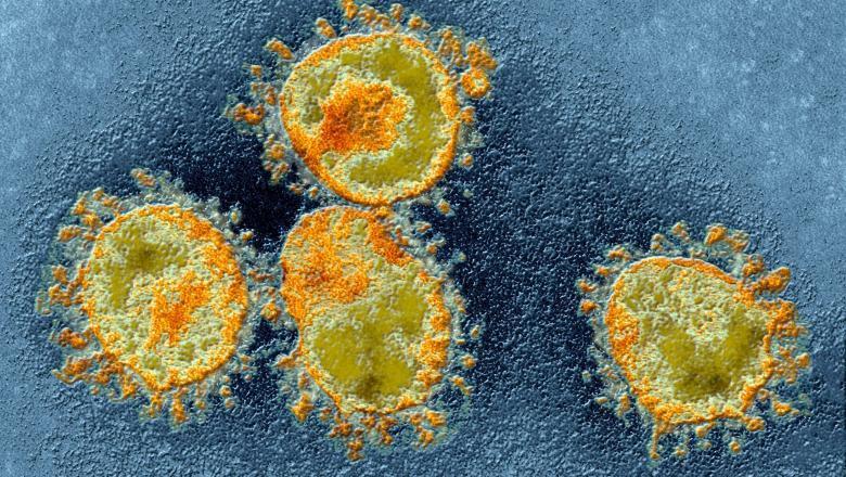 Încă un deces cauzat de coronavirus în România. Bilanțul ajunge la 30 de morți