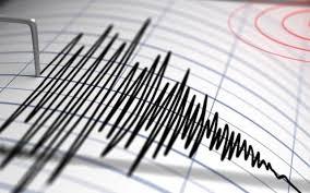 Pamantul s-a cutremurat. Cutremur de 4,5 grade pe scara Richter