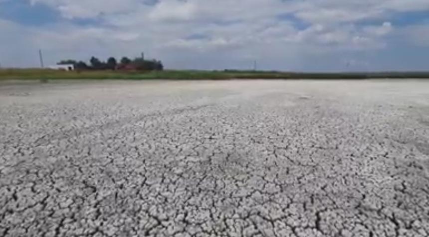 Constanţa: Un lac de peste 850 de hectare, aflat în Rezervaţia Biosferei Delta Dunării, a secat