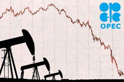 OPEC anticipează numeroase riscuri care ar putea duce la scăderea preţurilor petrolului în prima jumătate a anului 2021