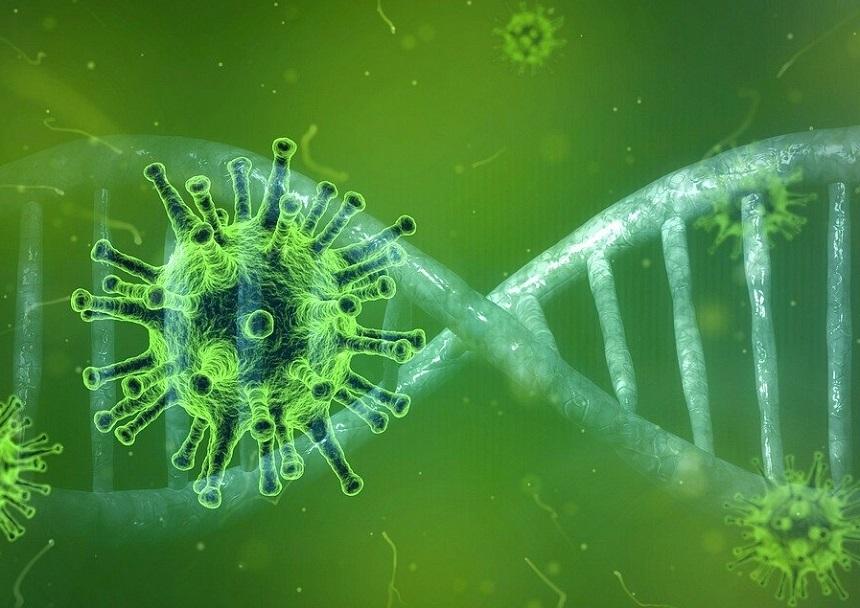 UPDATE - MedLife: 24 de cazuri noi cu noua tulpină din Marea Britanie a coronavirusului; cele mai multe, la probe recoltate în Bucureşti