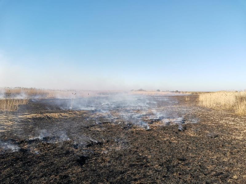 Incendiul de la ferma de porci din Periș nu a fost stins. 16 autospeciale luptă cu focul