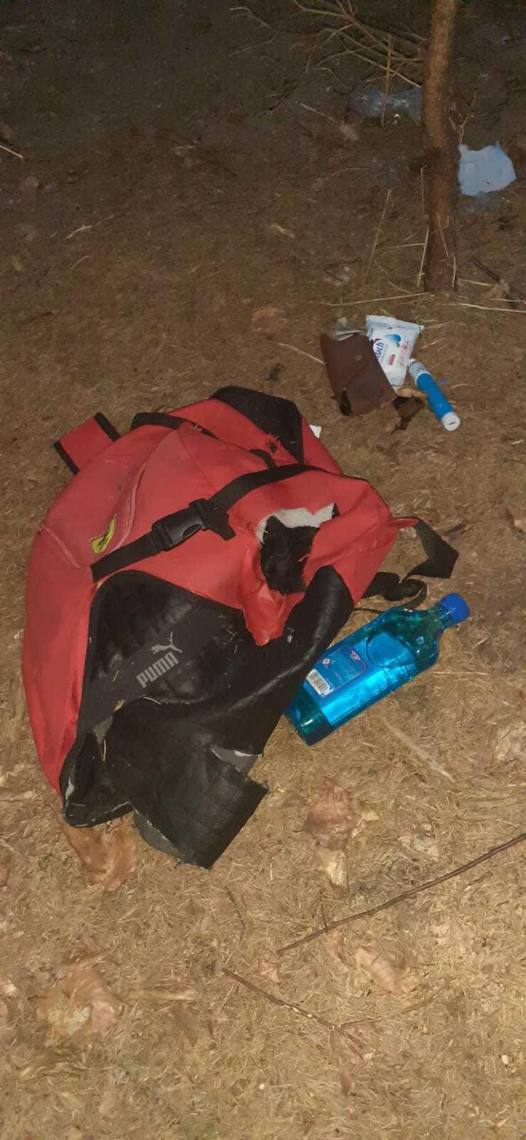 Harghita: Un turist a sunat la 112 după ce o ursoaică i-a luat rucsacul, la liziera pădurii din apropierea Lacului Sfânta Ana
