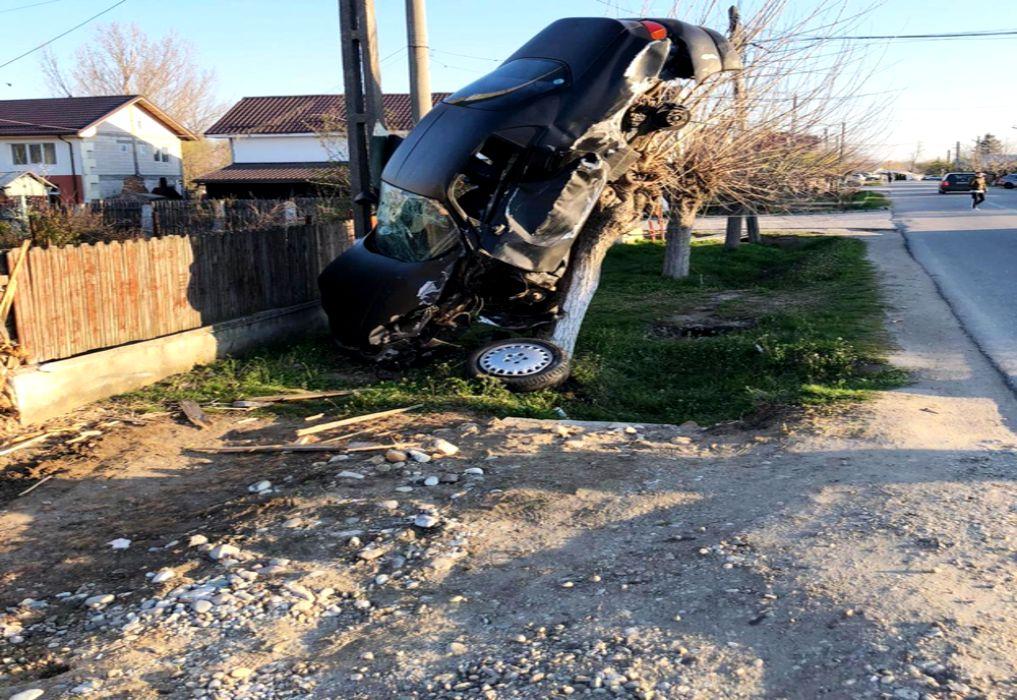 S-a urcat cu mașina în copac. Polițiștii spun că n-au mai văzut niciodată așa ceva