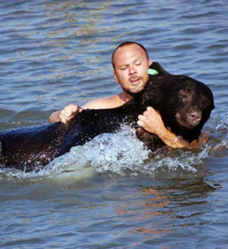 Un bărbat a salvat un urs de la înec, după ce autorităţile l-au împuşcat