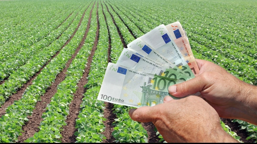 Coronavirusul afectează grav agricultura europeană; Statele bogate rămân fără forța de muncă din Est